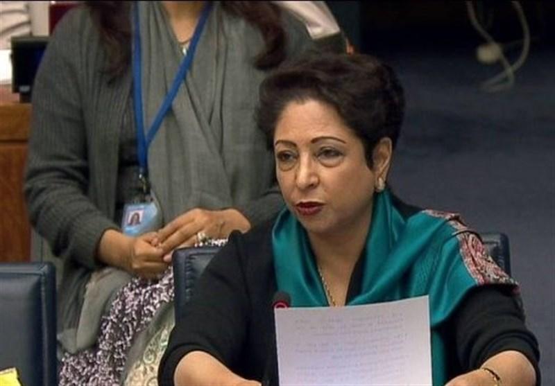 انتقاد پاکستان از تلاش کشورهای غربی برای گسترش اسلام هراسی
