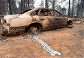 600 نفر در آتشسوزی کالیفرنیا ناپدید شدند