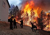 Firefighters Battle Blazes on Two Fronts in California, 50 Dead