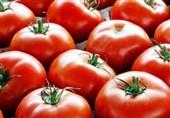 گوجه فرنگی گلخانهای 11 هزار تومان شد