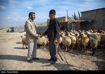 اقدامات فرهنگی و عمرانی جبهه فرهنگی انقلاب در مناطق زلزله زده کرمانشاه