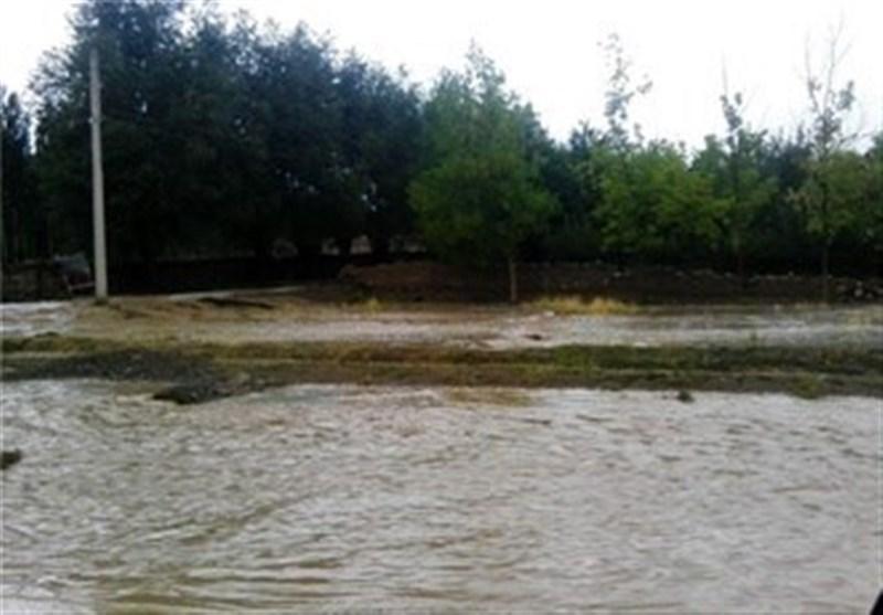 لرستان|بزرگترین انارستان ایران در خطر سیلاب؛ خسارت سیل سال 94 پرداخت نشد