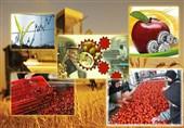 واحدهای تولیدی بخش کشاورزی لرستان به سرمایه در گردش نیاز دارند