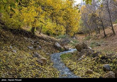 طبیعت پاییزی - کردستان
