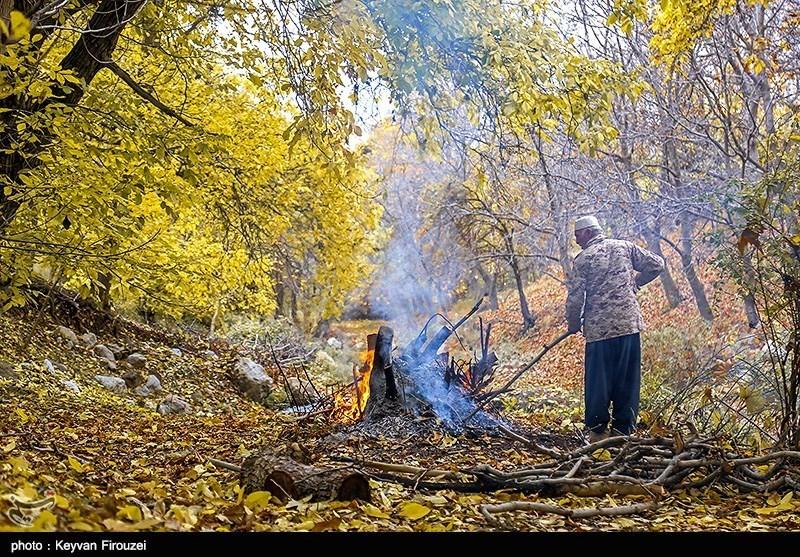 Iran's Beauties in Photos: Autumn in Kurdistan Province