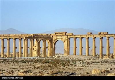 """ستون های """"تتراتیلون"""" در شهر باستانی پالمیرا"""