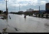 خوزستان  زیباییهای بارندگی بعد از خشکسالی چند ساله هندیجان به روایت تصویر