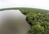 Climate Change May Soon Force Amazonian Major Carbon Sink to Become Carbon Source