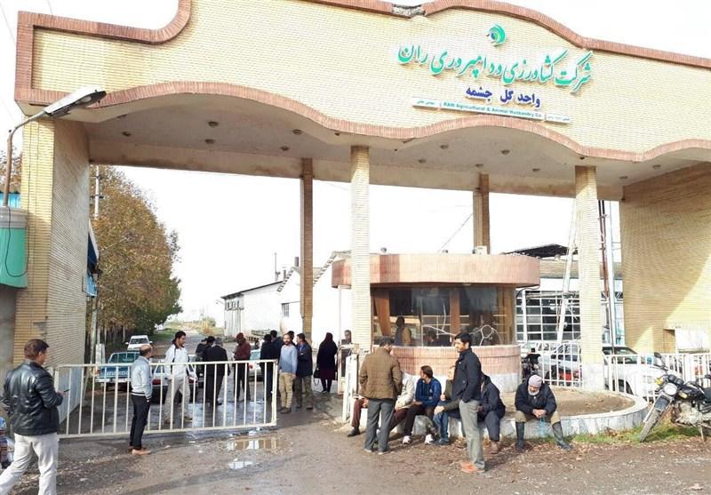 تجمع کارگران گلچشمه آزادشهر؛کارگران خواستار عدم واگذاری و فروش کارخانه هستند