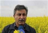 معاون وزیر جهاد کشاورزی: کود مورد نیاز کشاورزان به صورت کامل پرداخت شود