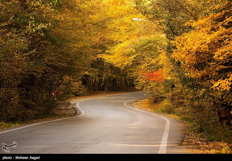 Gorgan in Autumn; Perfect Destination for Nature Lovers