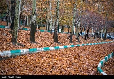 پاییز زیبای سنندج