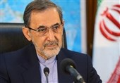 Velayati: Snapback Mechanism Piece of US Propaganda