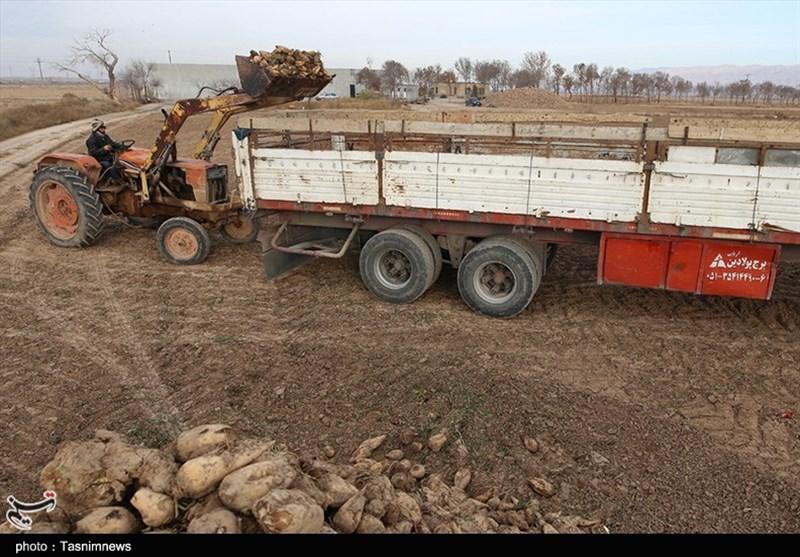 راهکار وزارت راه برای حل مشکل کارخانههای قند/ بلیت قطار 22 درصد گران میشود