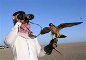 خسارت جبران ناپذیر به حیات وحش پاکستان نتیجه حضور شاهزادگان عرب در این کشور