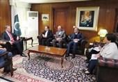 ایران اور پاکستان کو خطے میں امن کیلئے مشترکہ حکمت عملی اختیار کرنی ہوگی، عباس عراقچی