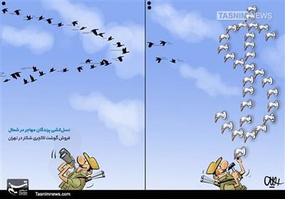 کاریکاتور/ غذایلاکچری با گوشت پرندگانمهاجر!