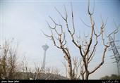هوای تهران همچنان ناسالم است/ روند کاهشی دمای هوای پایتخت