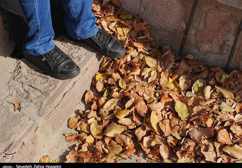 اعجاز رنگهای پاییزی در حال و هوای این روزهای تبریز به روایت تصویر