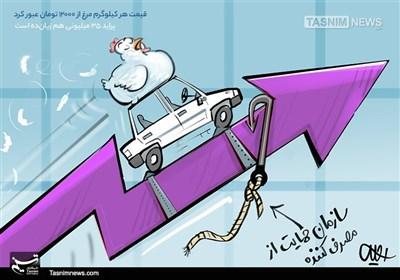 کاریکاتور/ پرواز مرغ و پراید!!!