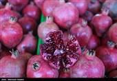 نمایشگاه شب یلدا در استان قزوین برپا میشود
