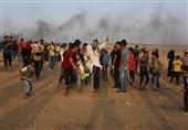درخواست حماس از جامعه جهانی/ اعلام آمار شهدا و مجروحان راهپیمایی بازگشت از 10 فروردین تاکنون