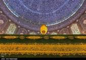 حضرت امام حسن عسکری (ع) کا جشن ولادت