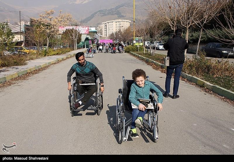 مازندران| 3 هزار دستگاه ویلچر بین معلولان کشور توزیع شد