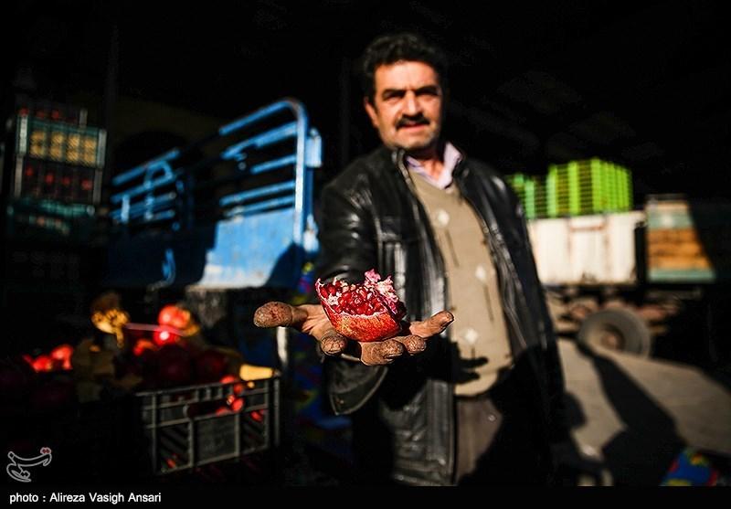 بارفروشان میوه کشاورزان را نسیه میخرند و نقد میفروشند- اخبار اقتصادی – مجله آیسام