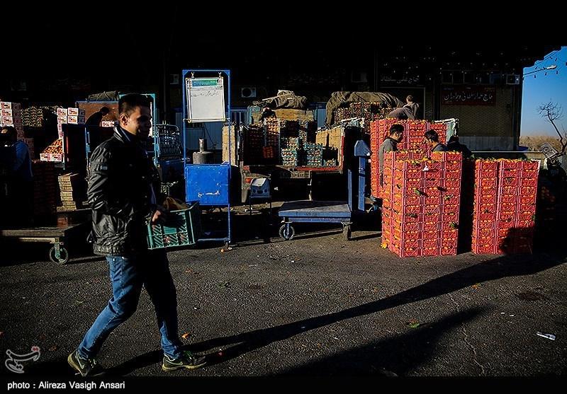 هشدار معاون دادگستری مرکزی نسبت به دفع غیربهداشتی زباله در میدان تره بار اراک