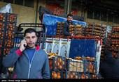 سخنگوی تعزیرات: اختلاف قیمت 6 هزار تومانی محصولات در میادین ترهبار توجیه منطقی ندارد