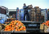قیمتهای میادین میوه و تره بار 38 درصد ارزانتر از سطح شهر است