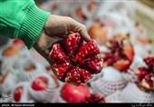 """اجرای کمپین """"چله تهران"""" ویژه شب یلدا"""