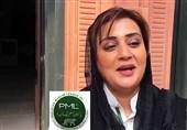 مریم نواز کی چھٹی، ن لیگ کی سوشل میڈیا ٹیم کے نئے سربراہ کے نام کا اعلان کردیا گیا