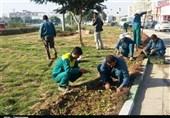 مناطق 22 گانه پایتخت از بیعدالتی در توزیع سرانه فضای سبز رنج میبرد