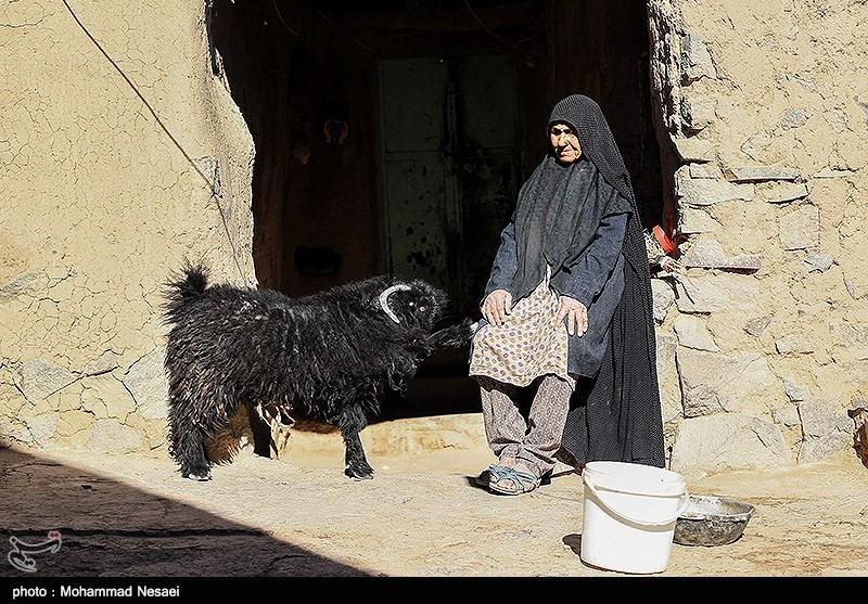 اردبیل| روند افزایشی مهاجرت از روستاهای خلخال و کوثر نگرانکننده است