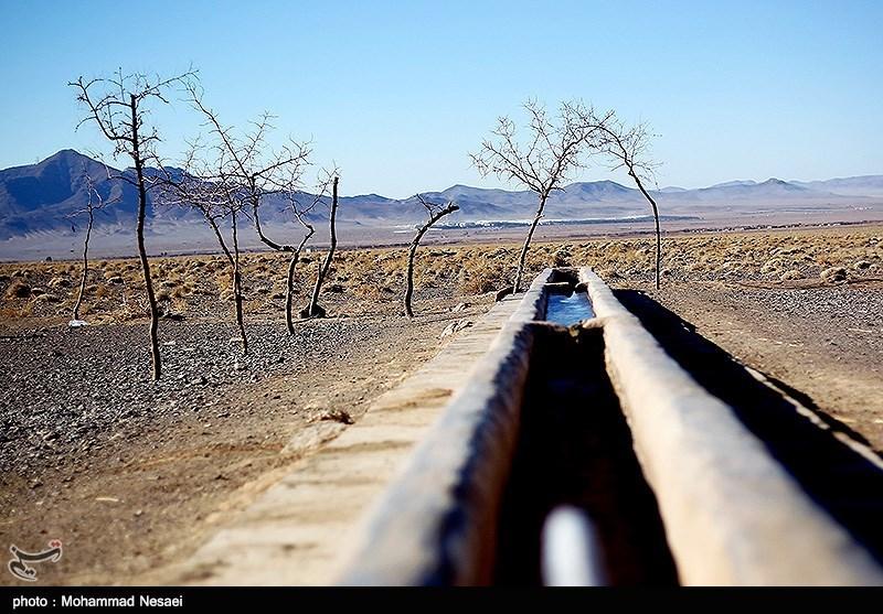خشکسالی به بخش کشاورزی خراسان جنوبی 2437 میلیارد تومان خسارت وارد کرده است