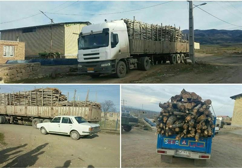 دادگستری آذربایجان شرقی دستور توقف قطع و حمل غیر قانونی درختان جنگلی و شهری را صادر کرد
