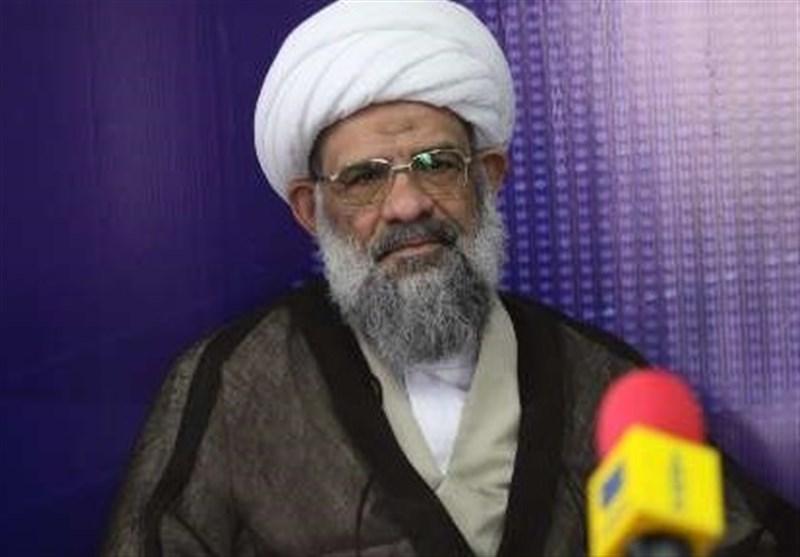عضو مجلس خبرگان رهبری: حضور امام رضا(ع) در ایران سبب عظمت تشیع شد