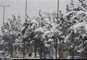 بارش برف چهره قزوین را سفیدپوش کرد