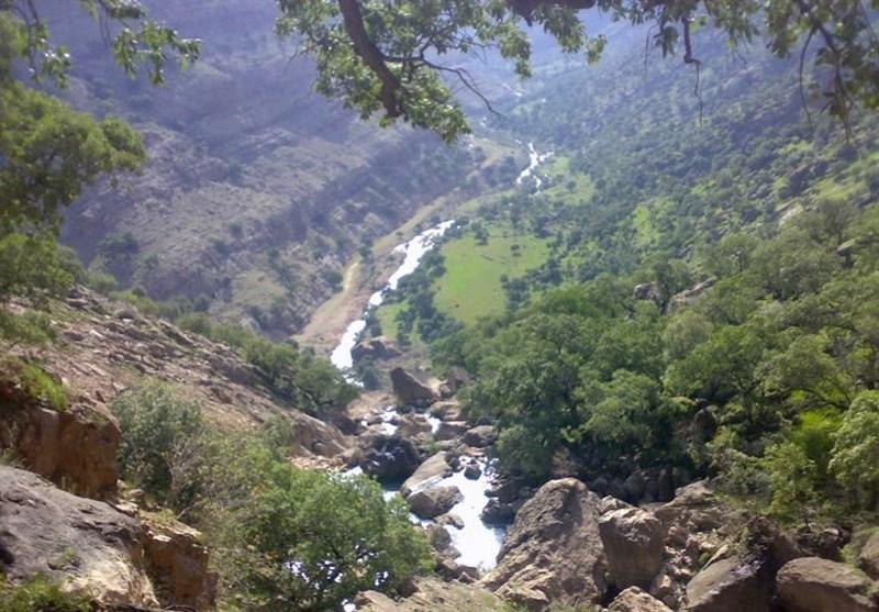 کردستان| طرح توسعه جنگل در 42 هکتار از اراضی ملی «ولهژیر» مریوان اجرا میشود