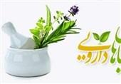 دانشآموزان در حوزه گیاهان دارویی و طب ایرانی استعدادیابی میشوند + پوستر