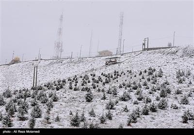 بارش برف در شهرکرد