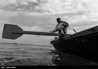 صید ماهی در سواحل دریای خزر