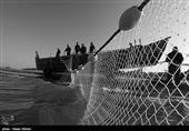 گیلان| صید ماهیان استخوانی از دریای خزر کاهش یافت