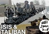 طالبان کے حملوں میں درجنوں داعشی دہشت گرد ہلاک
