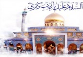 حضرت زینب کبری سلام اللہ علیھا کا یوم ولادت باسعادت کی مناسبت سے دنیا بھر میں جشن