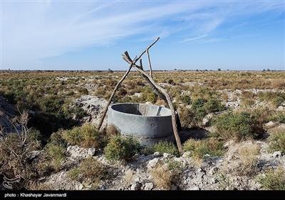 """کنار موضوع کاهش بارندگی، """"قطع آب"""" رودخانه هیرمند در شمال استان بهعنوان منبع تأمین آب 5 شهرستان شمالی و همچنین مرکز استان معضل دیگری بود که به بحران آب در سیستان و بلوچستان دامن زد و سبب شد تا میزان ورود آب در حوزههای مختلف هامون هیرمند نسبت به سال آبی قبل 93 درصد کاهش یابد."""