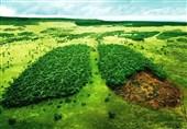 پاسخ مدیرکل حفاظت محیط زیست استان تهران در سنجش دلایل افزایش اُزون