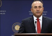 Çavuşoğlu'nun elçi krizi sırasında 'Gitmek zorunda kalırım' dediği iddia edildi